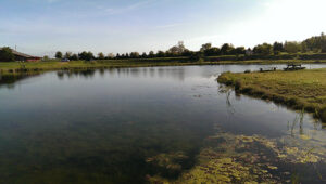 Put & Take fiskesø